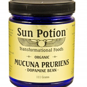 buy mucuna pruriens from sun potion online and save 10%