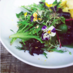 spring salad with herbs and edible flowers