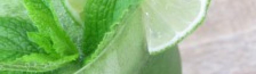 Coconut Cucumber Mint Cooler