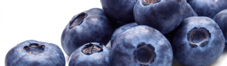 Chocolate Covered Blueberry Smoothie